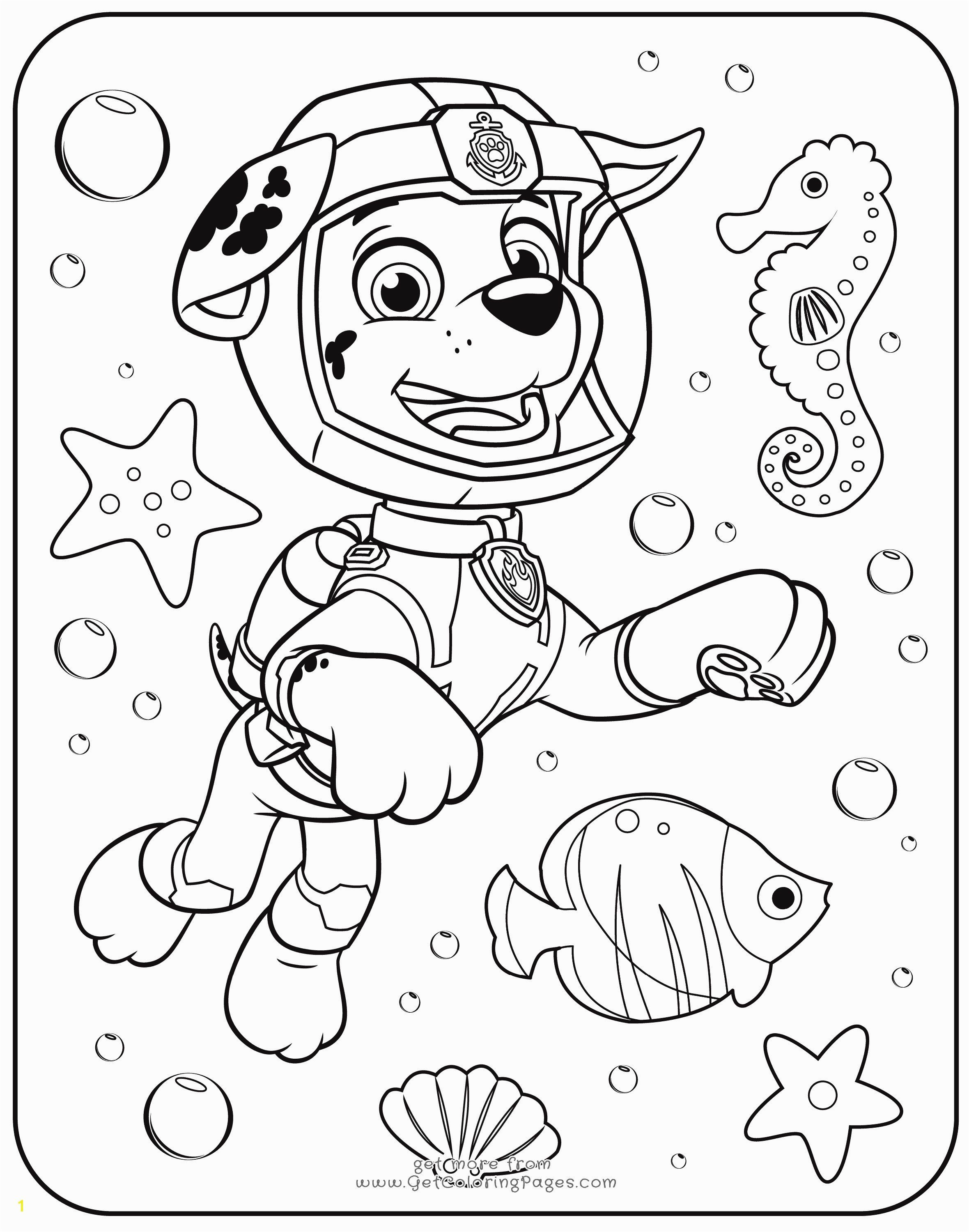 Printable Paw Patrol Coloring Pages Zuma Coloring Pages New Paw Patrol Rocky Skye And Zuma Coloring Page