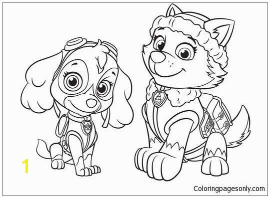 Zuma Paw Patrol Coloring Page Best Skye Paw Patrol Coloring Pages