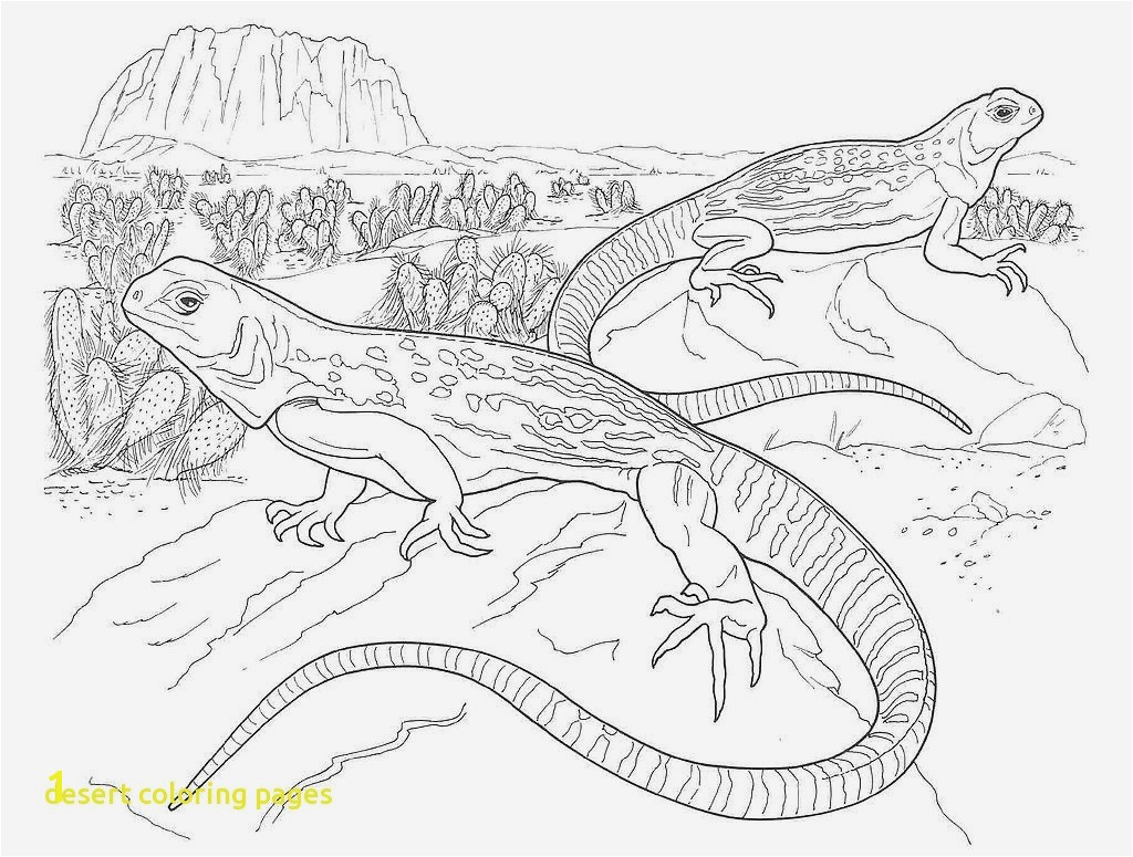 Desert Coloring Pages conf