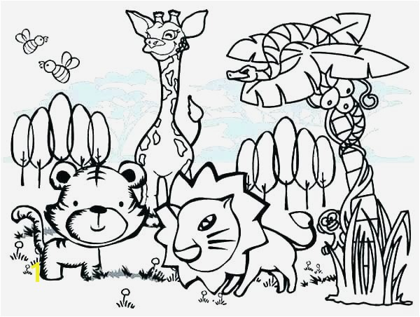 Sonoran Desert Animals Coloring Pages Related Post