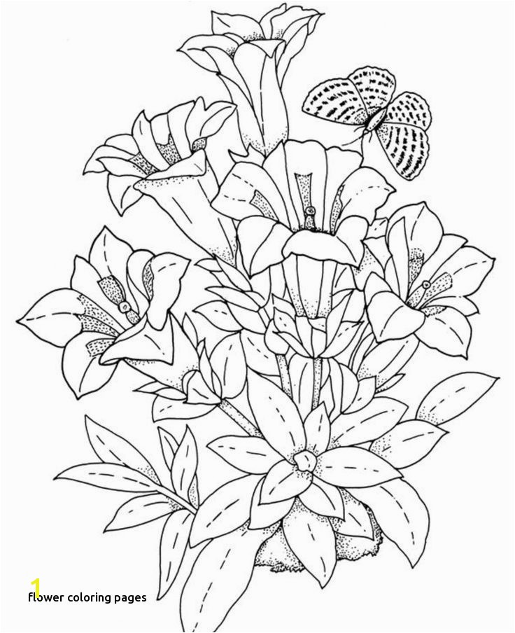 Cool Vases Flower Vase Coloring Page Pages Flowers In A top I 0d Flowers Cloring Pages