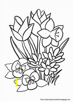 Spring Flowers Coloring Pages for Preschoolers Flower Page Printable Coloring Sheets