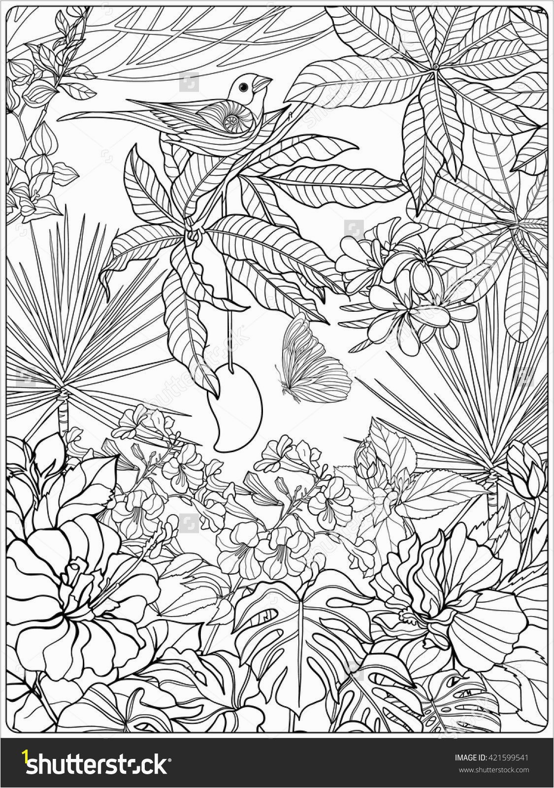 Sumerian Coloring Pages Fresh Tropical Wild Birds and Plants Tropical Garden Collection Coloring Sumerian Coloring