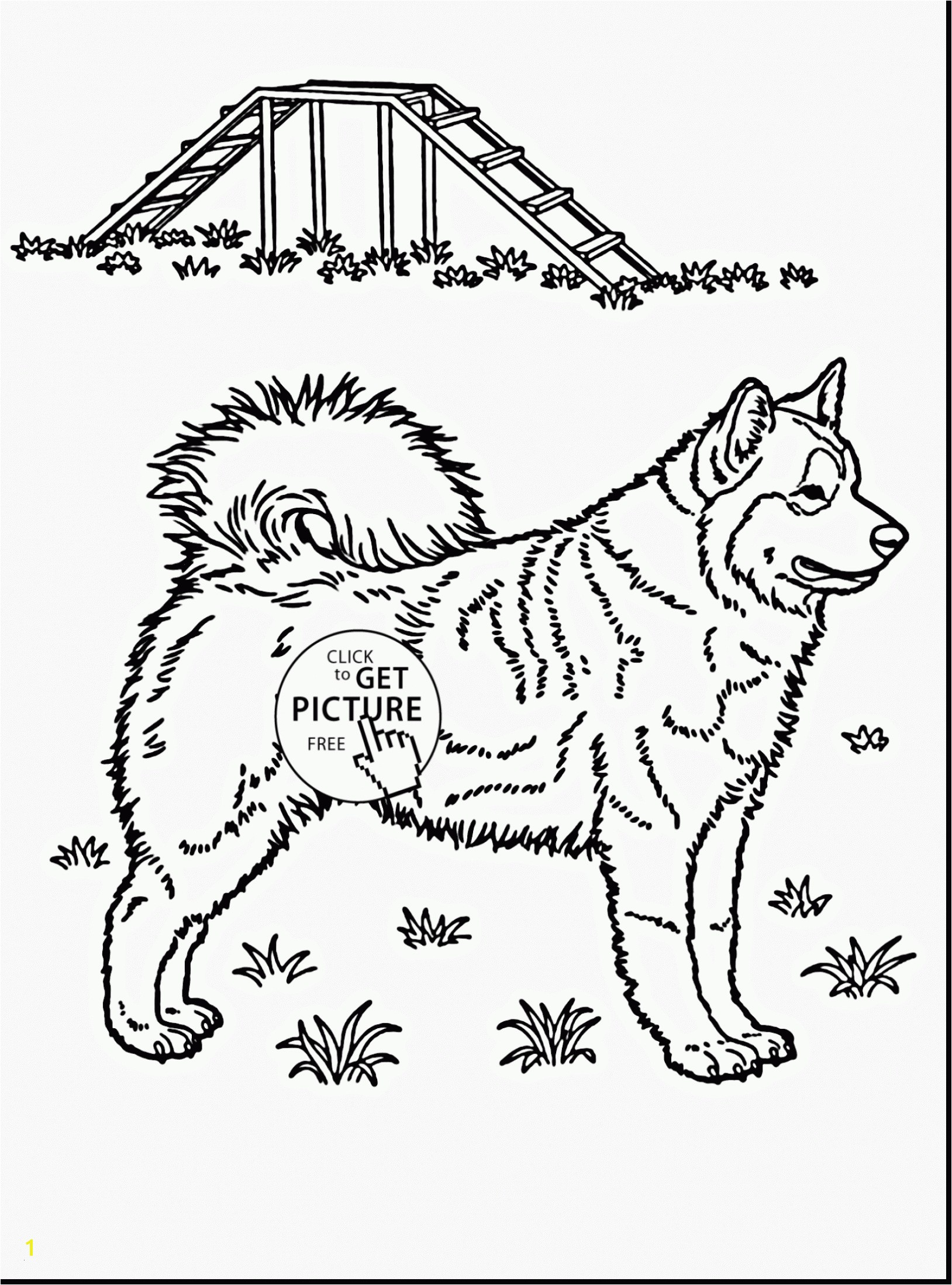 Coloring Pages Huskies Husky Coloring Pages Wonderful Husky Coloring 0d Free Coloring Pages