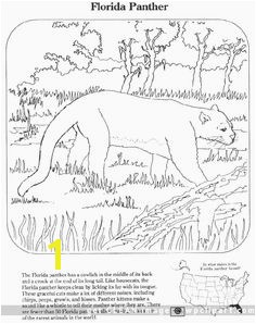 florida panther coloring pages