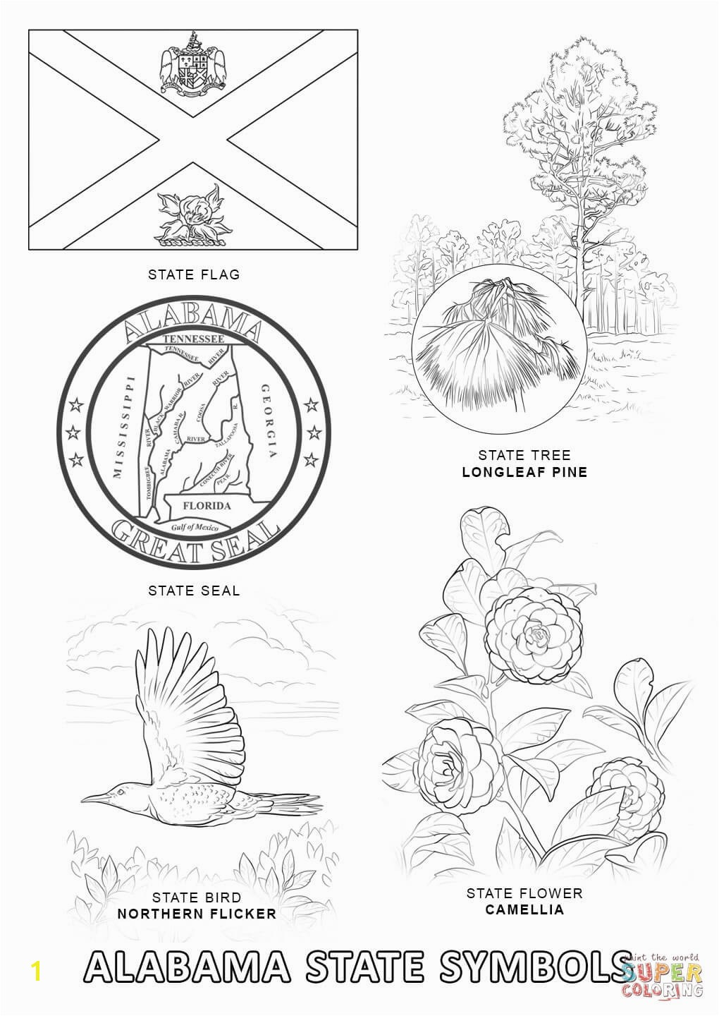 Symbols Of the Usa Coloring Pages Alabama State Symbols Coloring Page