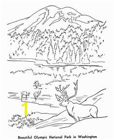 Olympic National Park Coloring Page