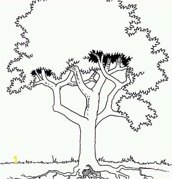 Roots Coloring Page Bialystoker easy coloring pages Tree With Roots Coloring Page