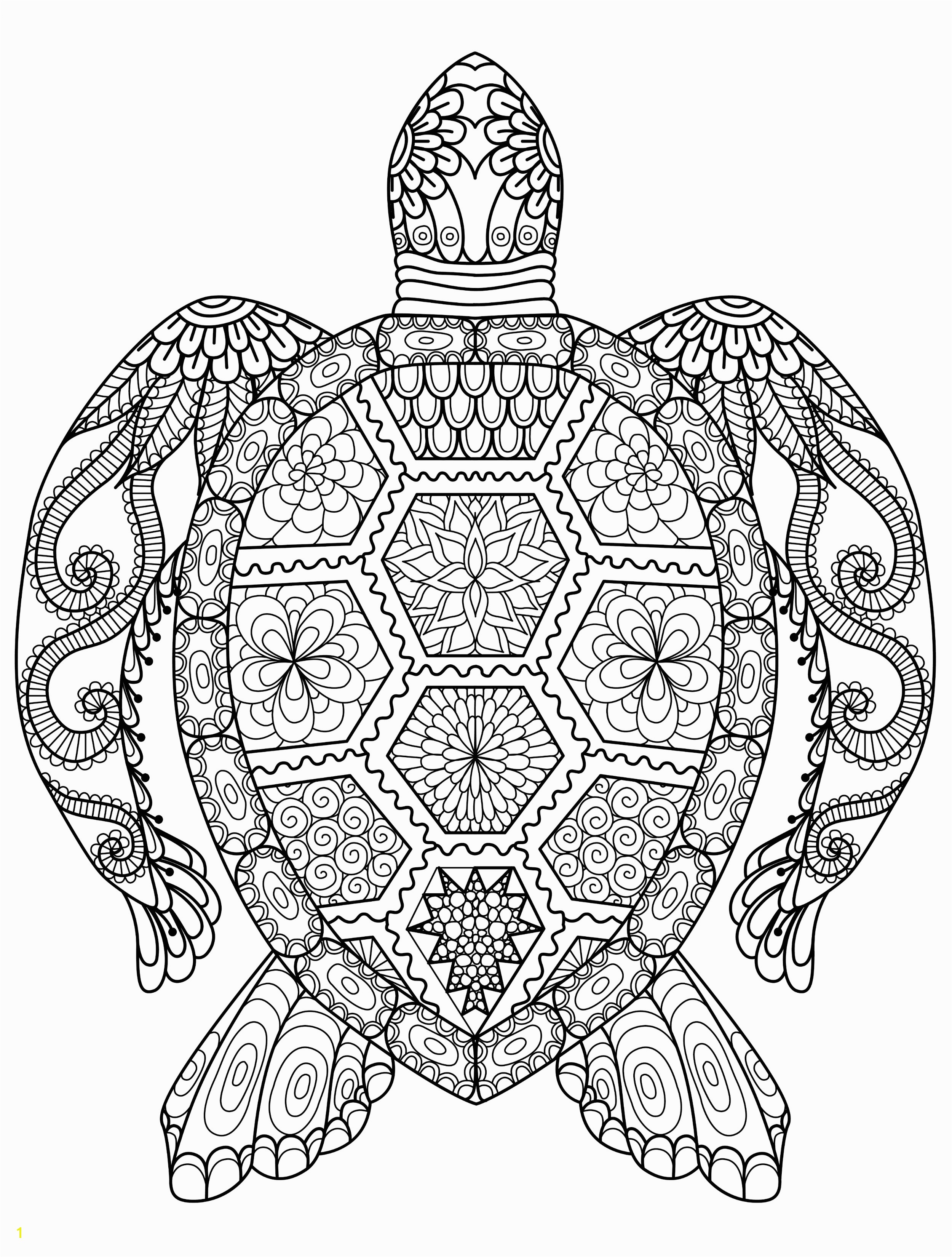 sea turtle coloring page for adults for free