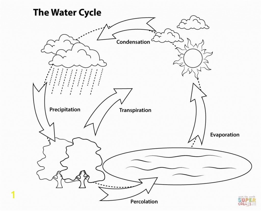 Water Cycle For Kids Coloring Page Water Cycle Coloring Pages Heathermarxgallery