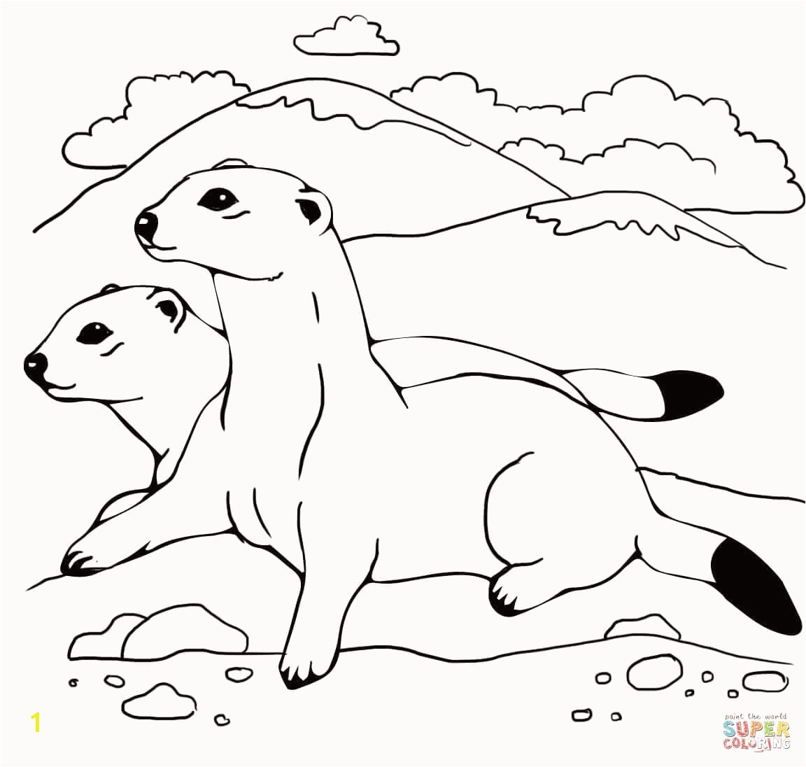 Weasel Coloring Pages Amazing Weasel Mustela Coloring Pages Collection Weasel Coloring Pages Elegant Weasel 16