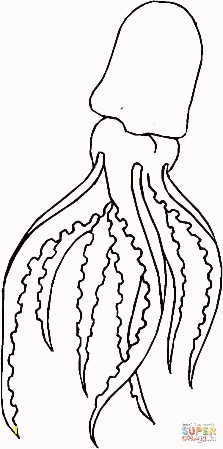 weasel coloring pages unique giant squid coloring page of weasel coloring pages
