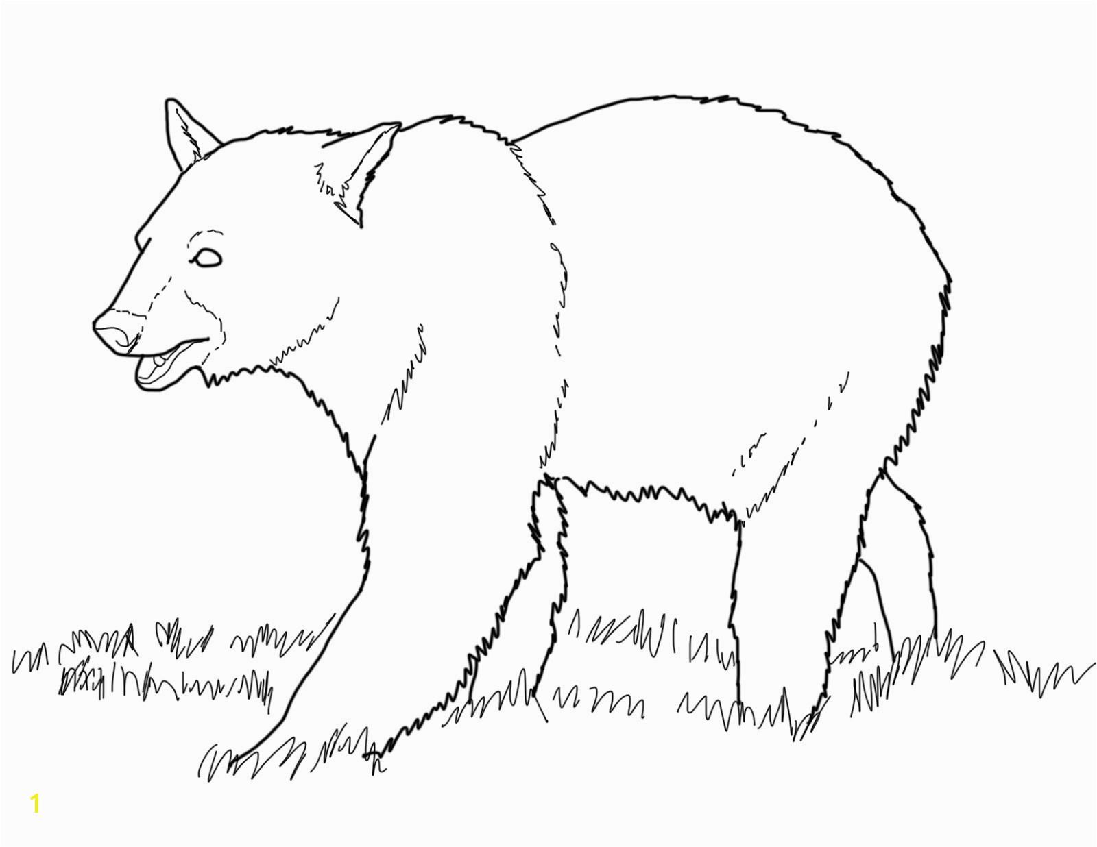 Panda Bear Coloring Page