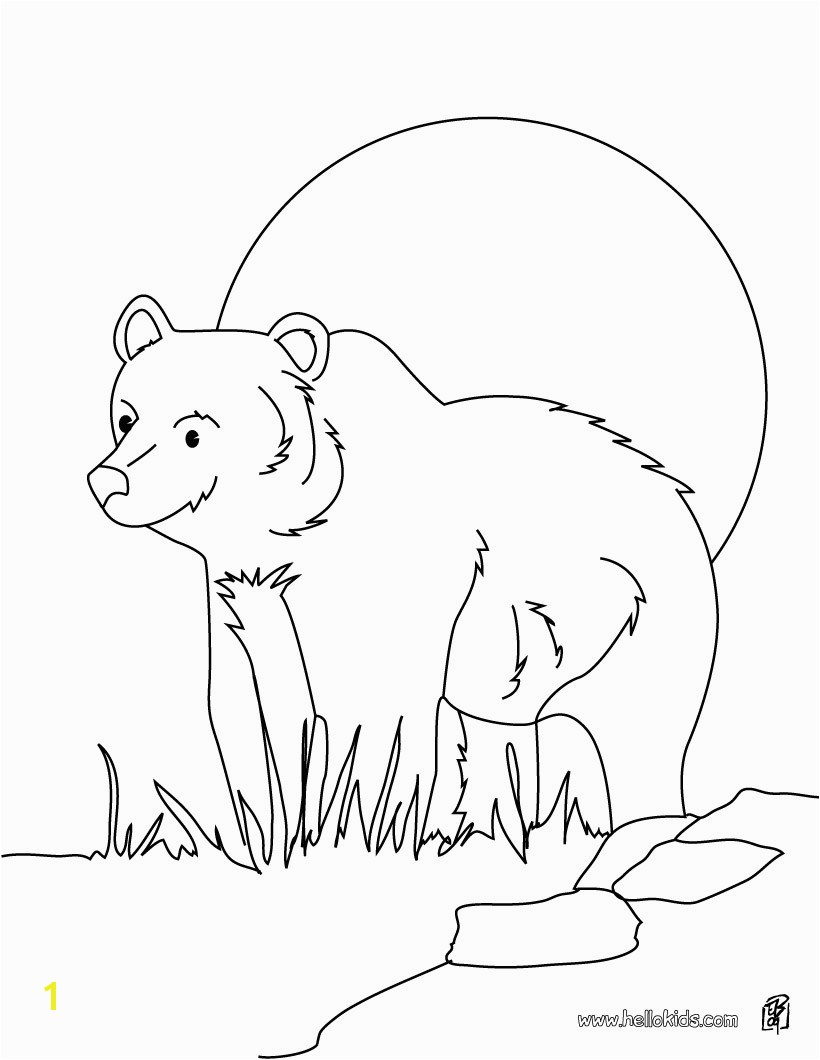 grizzly bear coloring page source 7cx