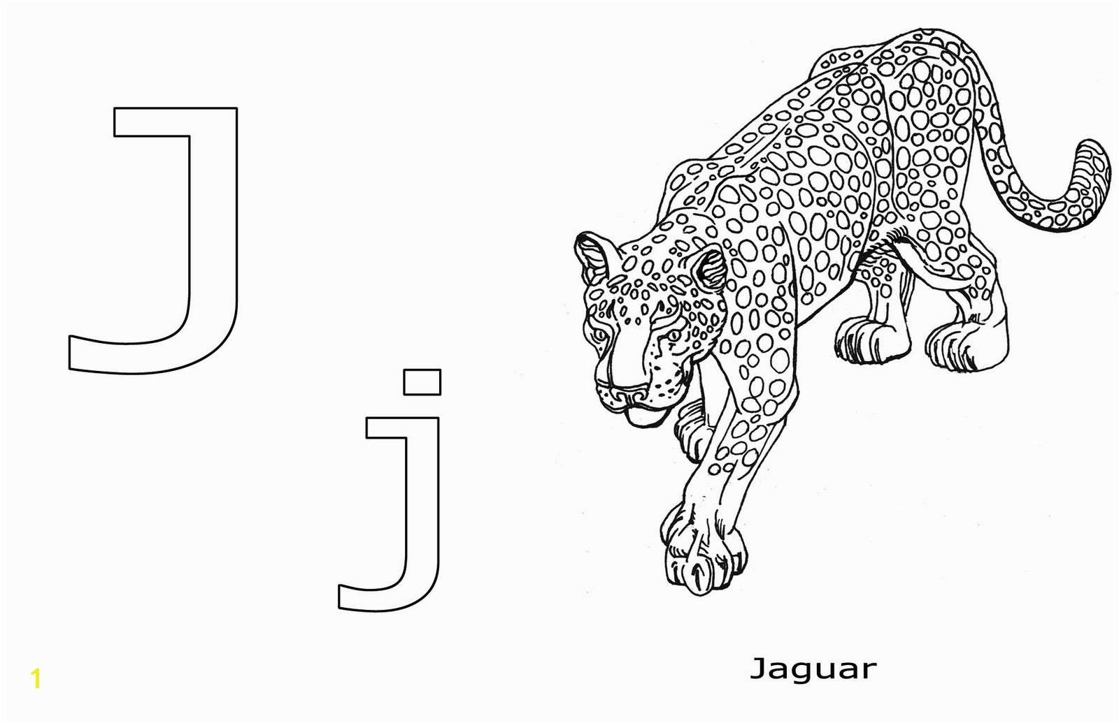 r is for ravens j is for jaguar