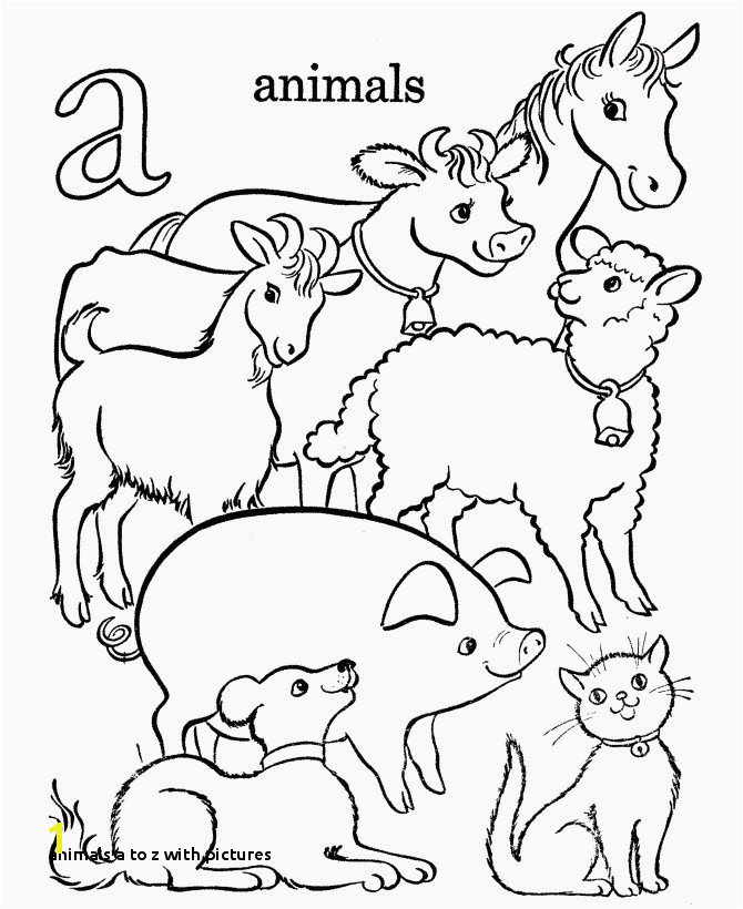 Animals A to Z with A Z Coloring Pages Vases Flower Vase Coloring Page Pages Flowers