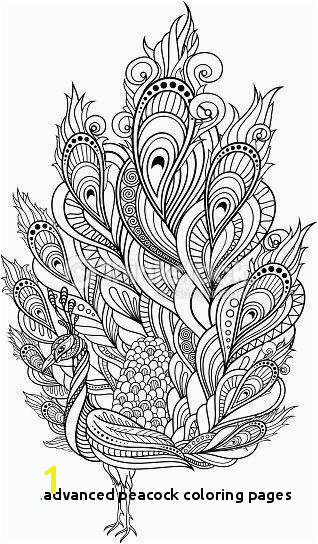 Advanced Peacock Coloring Pages Advanced Peacock Coloring Pages New Printable Cds 0d – Fun