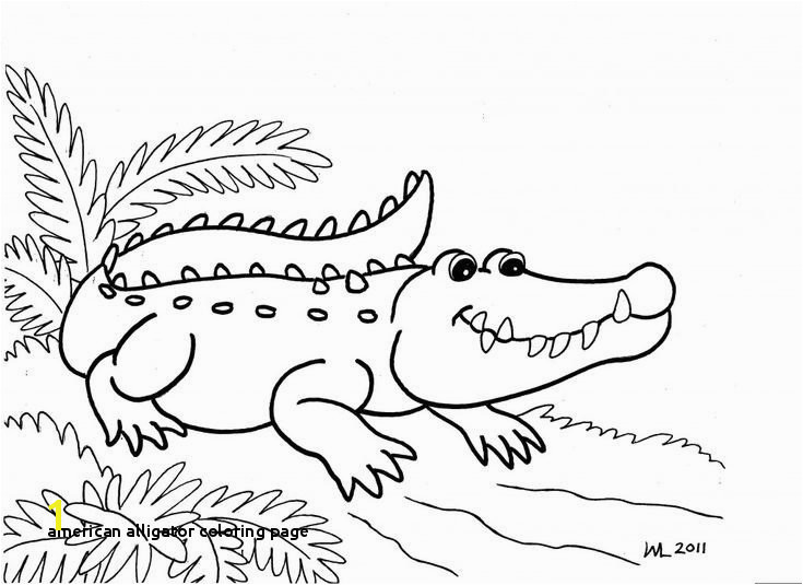 30 American Alligator Coloring Page