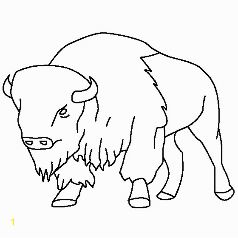 new american bison coloring pages design printable coloring sheetbest of american bison coloring pages free 17