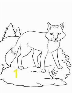 FREE Artic Fox Coloring Page for Kids winter coloring pages Hibernating Animal Worksheet