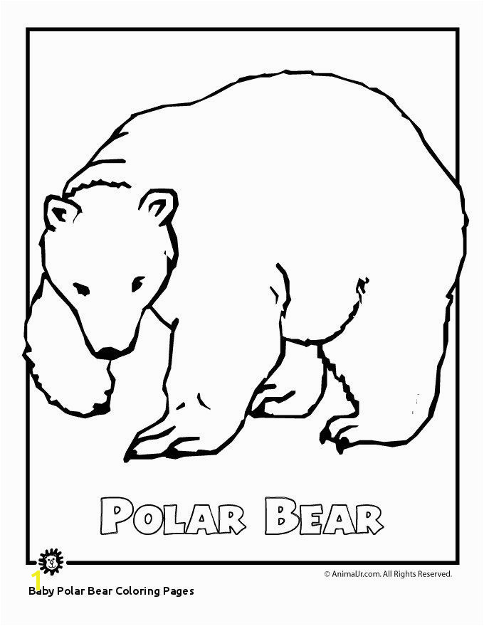 Baby Polar Bear Coloring Pages Arctic Animal Coloring Pages