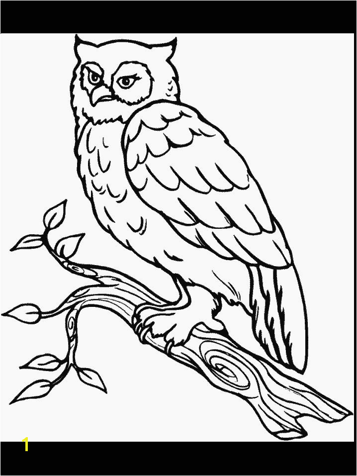Babe the Pig Coloring Pages 45 Best Windows Color Pinterest