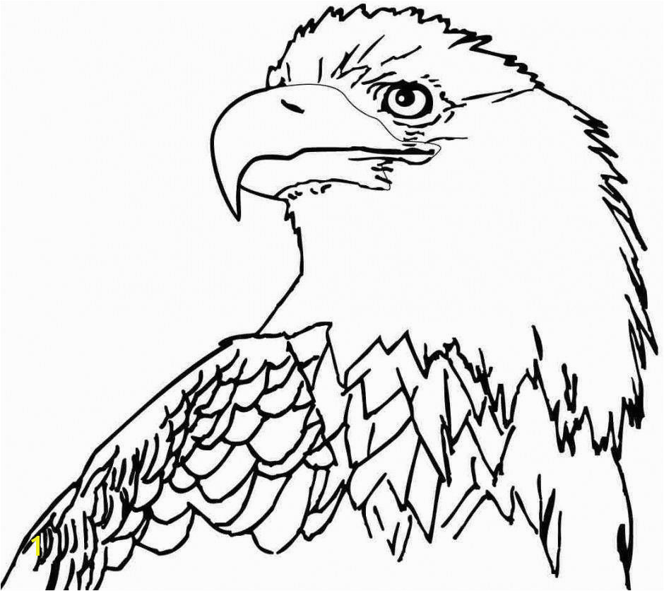 Bald Eagle Coloring Page Best Free Bald Eagle Coloring Pages Az Coloring Pages Inspiration Bald