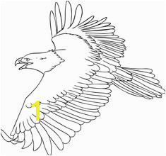 Bald Eagle Coloring Page 51 Best Eagle Coloring Pages Images On Pinterest
