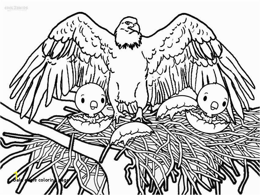 Bald Eagle Coloring Page 11 Bald Eagle Coloring Page