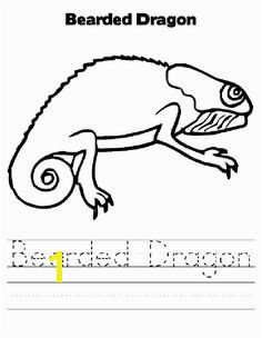 Bearded Dragon coloring page Animals Town animals color sheet Bearded Dragon free printable coloring pages animals