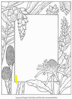 Coloring page with flowers plants around an open area for adding your own elements
