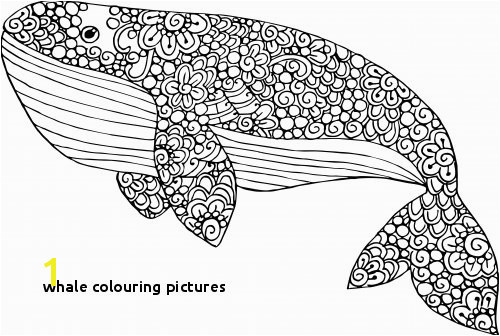 Blue Whale Coloring Page Coloreando Coloring Pinterest