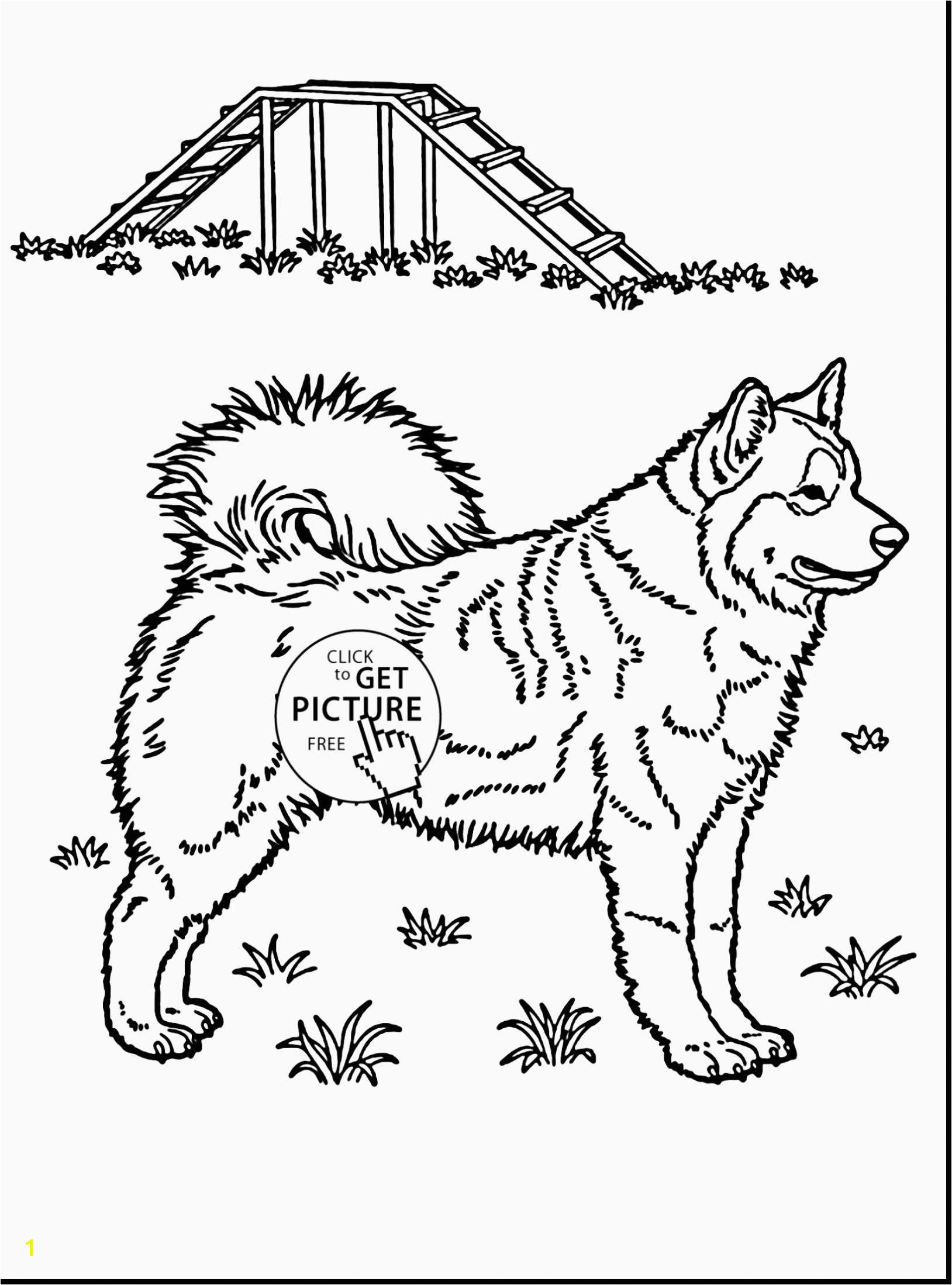 Mermaid Coloring Pages Husky Coloring Pages Beautiful Husky Coloring 0d Free Coloring Pages Fun Time