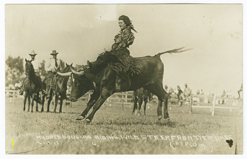 Mildred Douglas riding a bucking bull circa 1917