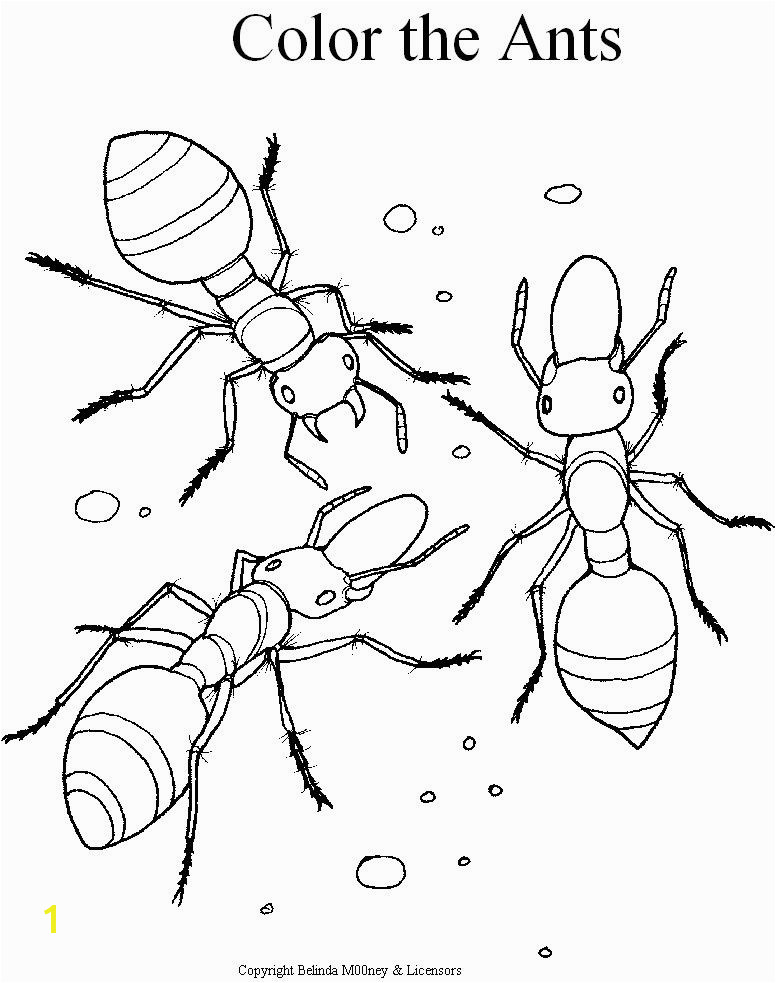 Ant Coloring Pages Printable for Kids