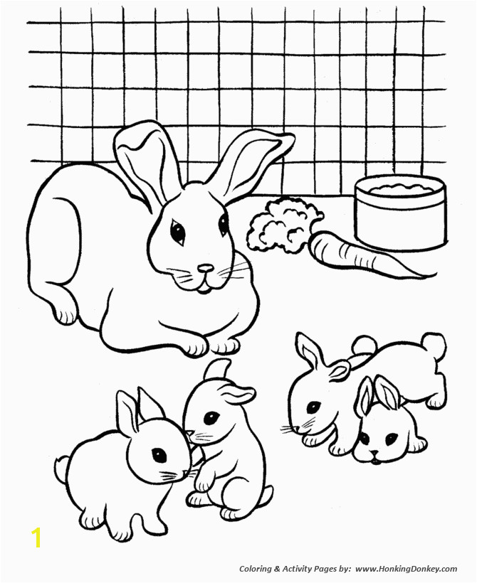 Bunny Coloring Pages Printable House Pets Coloring Pages