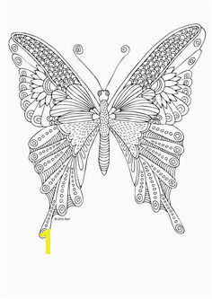 Kittens and Butterflies Coloring Book by Katerina Svozilova zon
