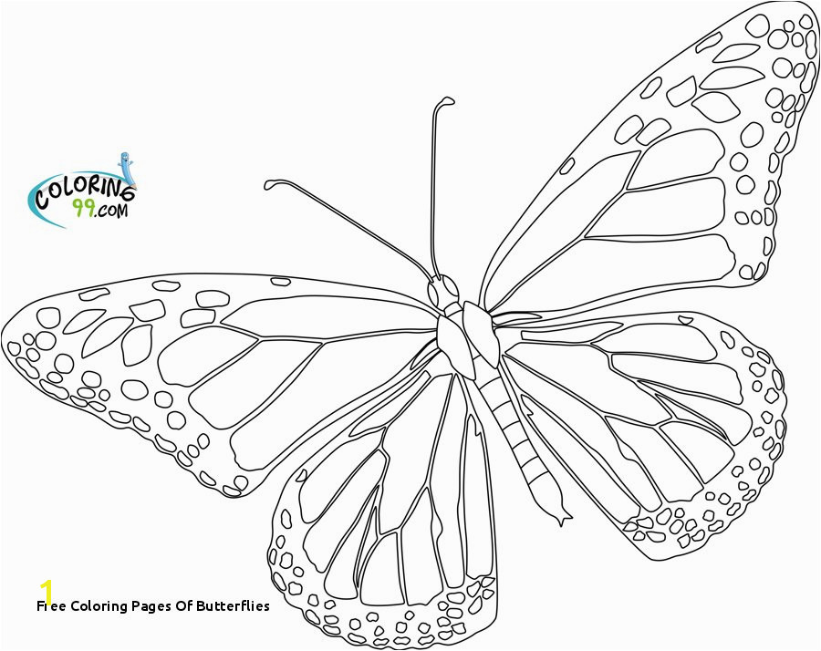 Free Coloring Pages butterflies Cartoon butterfly Coloring Pages Printable Monarch butterfly