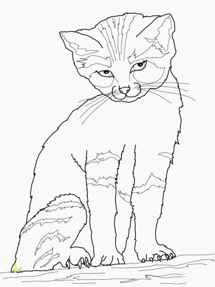 Free Cat Coloring Pages Inspirational Cat Coloring Best New Happy Halloween Coloring Pages Cat