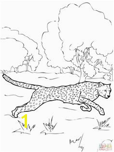 Cheetah coloring page Reise Um Die Welt Animal Coloring Pages Coloring Pages For Kids