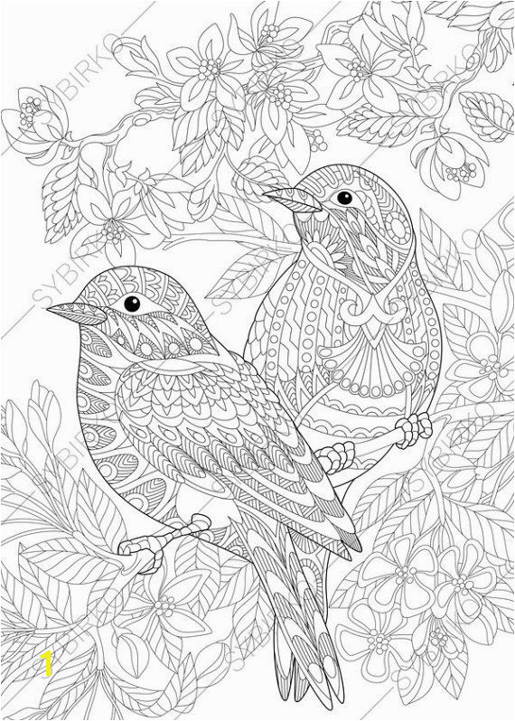 Sparrow Birds Adult Coloring Book Page by ColoringPageExpress