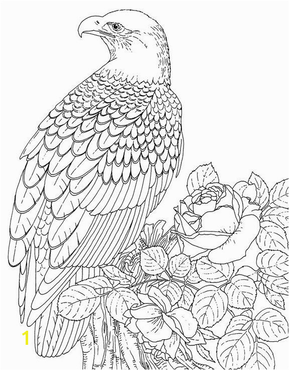 Eagles Lions of the Sky Coloring Pages