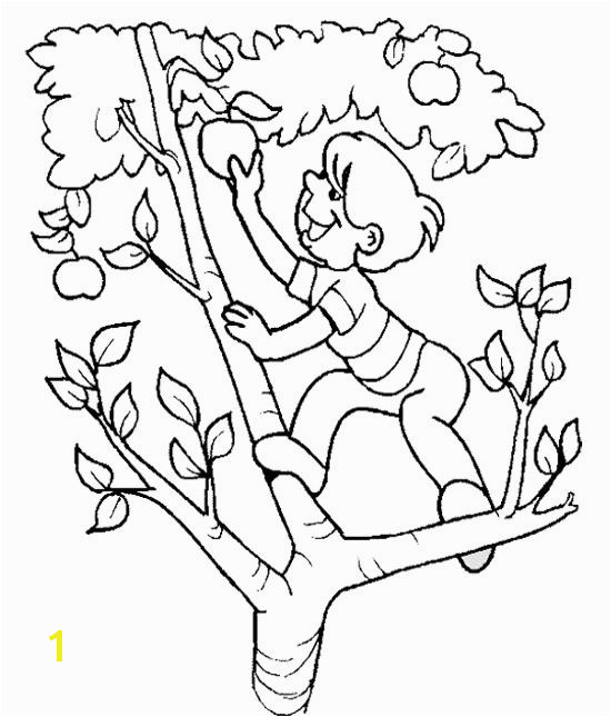 The Child Apple Picking The Apple Tree Coloring Page