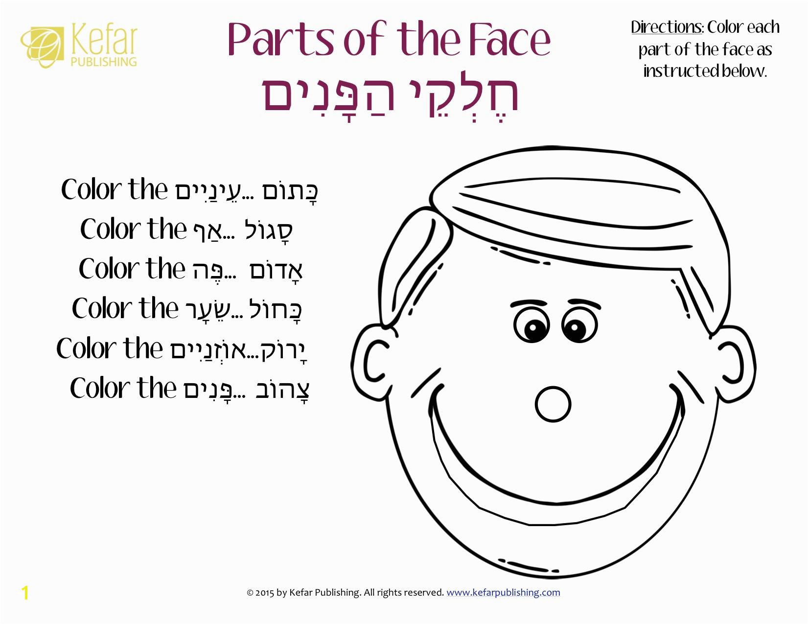Parts The Face Coloring Hebrew עברית Kefar Publishing