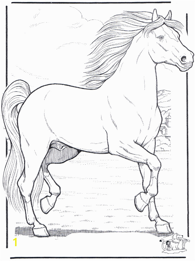 FunnyColoring Animals coloring pages b Horses b