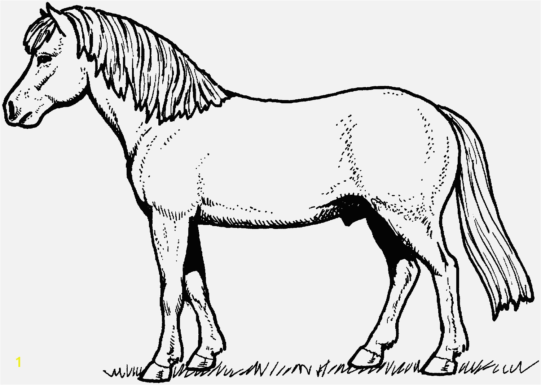 Pferde Ausmalbilder Verschiedene Bilder Färben Horse Coloring Pages Pferde Ausmalbilder Beispielbilder Färben Christmas Coloring Pages