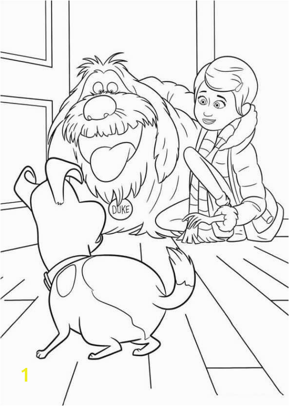 Coloring Pages Kids N Fun 29 Coloring Pages Of Secret Life Of Pets On Kids N Fun Op