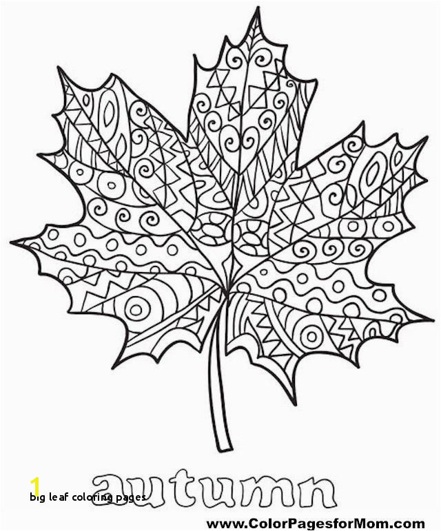 Big Leaf Coloring Pages Awesome Zentangle Coloring Pages Fresh Best