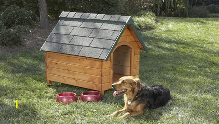 Dogs for Free Elegant Free Dog House Plans Elegant Pitbull Dog House Plans 0d