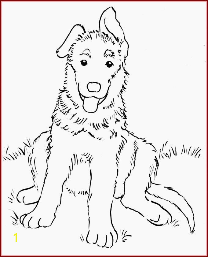 Husky Coloring Pages Beautiful Husky Coloring Pages Beautiful Inspirational Husky Coloring Pages Husky Coloring Pages